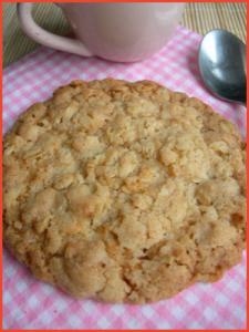 Mega-biscotto-ai-fiocchi-d-avena-vegan
